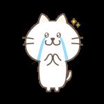 嬉し泣きする猫